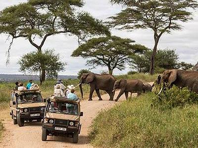 Samburu Trails – Just another WordPress site